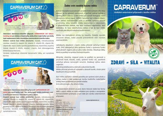 katalog str2
