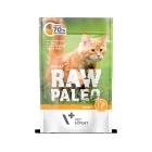 Masová kapsička Raw Paleo  Adult -  Krůtí se slunečnicovým olejem 100g